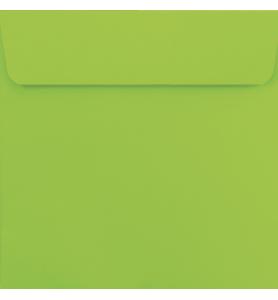 Lot de 25 enveloppes vert pomme carrées